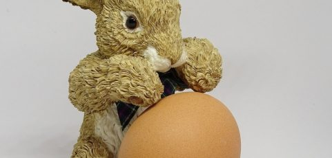 Eggs, Liability and Data Protection