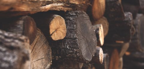 A Lease Agreement for Firewood?